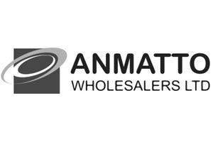 anmato logo